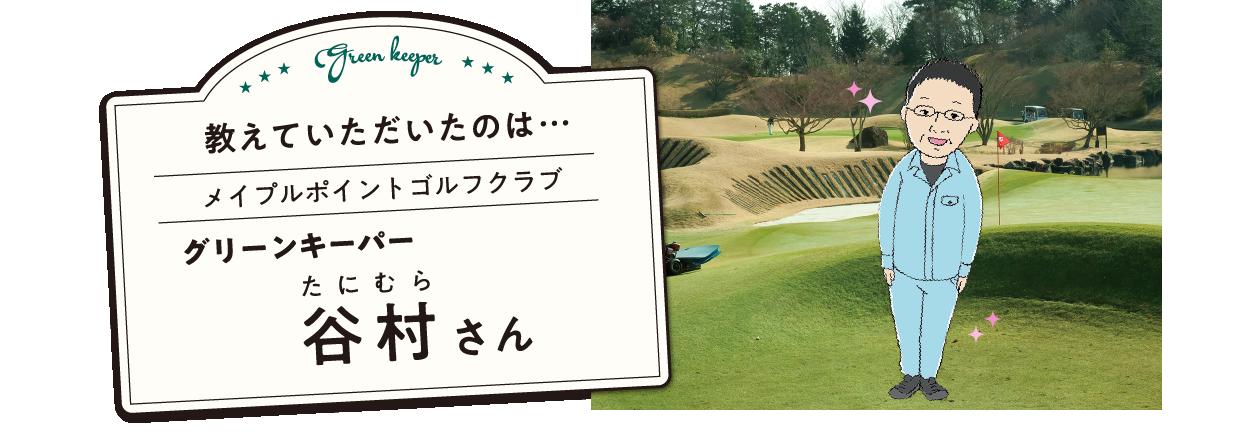 教えていただいたのは… メイプルポイントゴルフクラブ グリーンキーパー 谷村さん